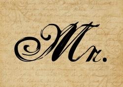 Mr. v3.0