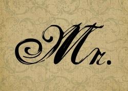 Mr. v2.0