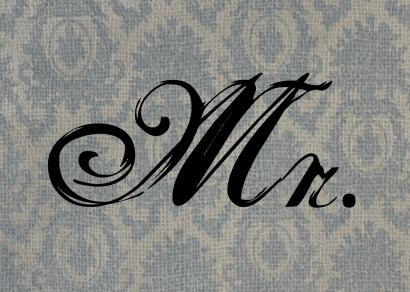 Mr. v1.0